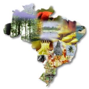 curso de guia turístico gratuito Curso de Guia Turístico Gratuito