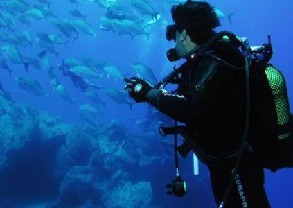 curso de mergulho senai RJ Curso De Mergulho Senai RJ