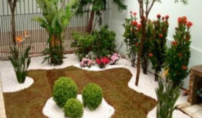 Plantas Para Paisagismo Fotos Dicas3 Plantas Para Paisagismo, Fotos, Dicas