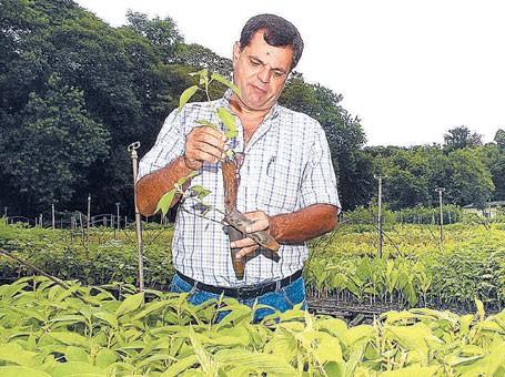 curso de engenheiro agronomo gratuito faculdades de agronomia Curso de Engenheiro Agrônomo Gratuito, Faculdades de Agronomia