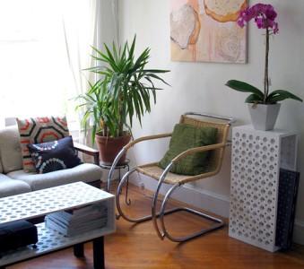 decoração de salas com plantas fotos 1 Decoração De Salas Com Plantas, Fotos