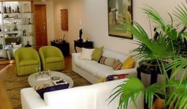 decoração de salas com plantas fotos 3 Decoração De Salas Com Plantas, Fotos