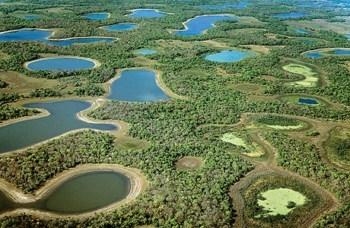 Pescaria no Pantanal Pacotes de Viagem Pescaria no Pantanal, Pacotes de Viagem