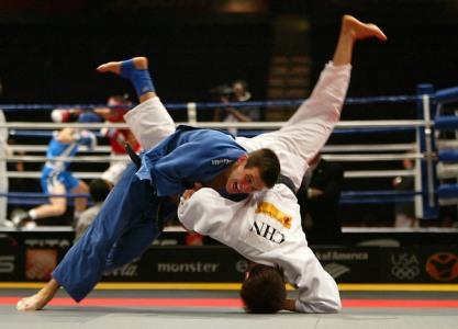 curso online de judo Curso Online De Judô