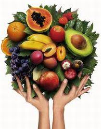 Benefícios da vida vegetariana para a saúde Benefícios da Vida Vegetariana para a Saúde