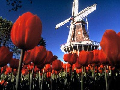 lugares turisticos na holanda Lugares Turísticos Na Holanda