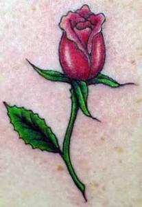 Tatoo 3 207x300 Tatuagens Femininas no Braço, Fotos, Ideias