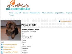cãosamento 02 Site Cãosamento, Relacionamento para Cachorros