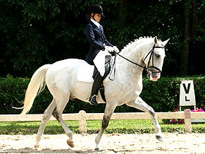 curso adestramento cavalos 01 Curso de Adestramento de Cavalos