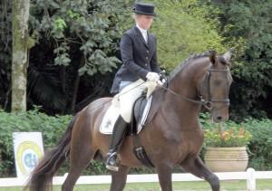 curso adestramento cavalos 02 300x211 Curso de Adestramento de Cavalos