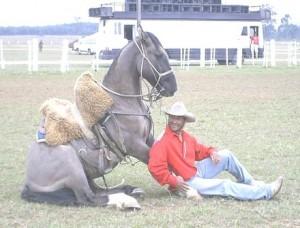 curso adestramento cavalos 04 300x228 Curso de Adestramento de Cavalos