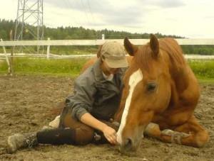 curso adestramento cavalos 05 300x227 Curso de Adestramento de Cavalos