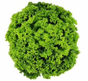 folha1 Benefícios das Folhas Verdes