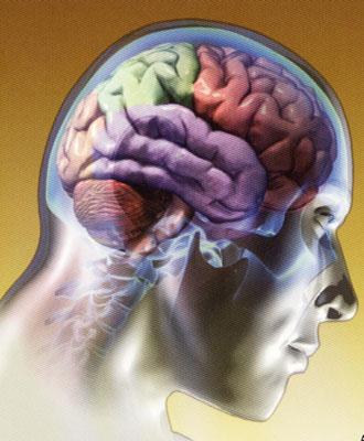 melhorar memoria1 Técnicas para Obter Boa Memória