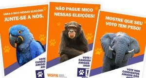 ong proteção animal 03 300x161 Como Montar uma ONG de Proteção Animal