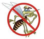 sintomas e tratamento da dengue3 Sintomas e Tratamento da Dengue
