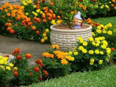 vasos para jardinagem Vasos Para Jardinagem
