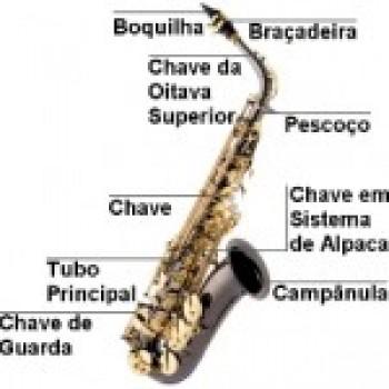 Partes do Sax Como Aprender a Tocar Saxofone