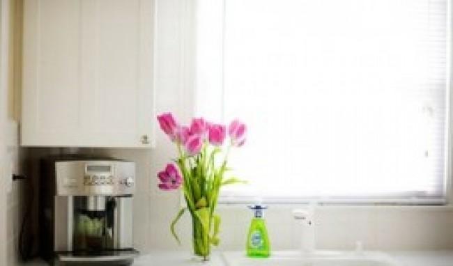 decoração de cozinha com plantas 3 Decorar Cozinha Com Plantas Dicas