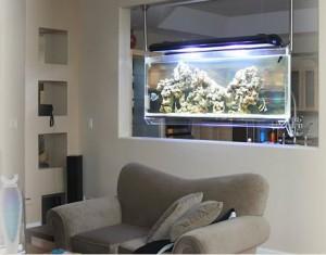 decoracao com aquarios dicas fotos 300x2351 Decoração Com Aquário Dicas