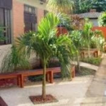 jardim 3 Jardins de fachada