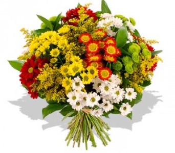 melhores flores para presentear 1 Melhores Flores Para Presentear