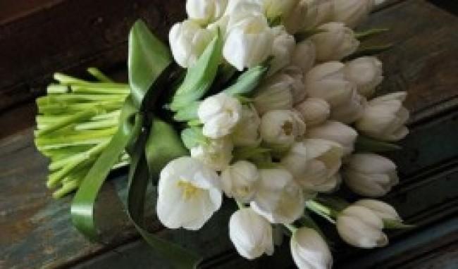 melhores flores para presentear 4 Melhores Flores Para Presentear
