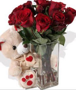 melhores flores para presentear Melhores Flores Para Presentear