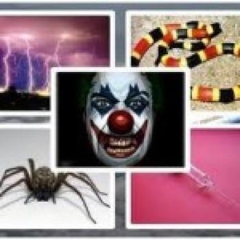 tratamentos para fobias 1 Tratamentos para Fobias