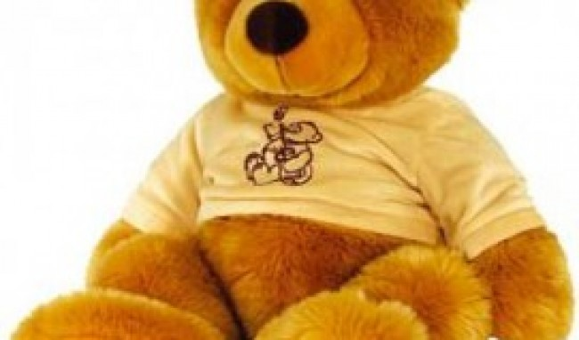 urso de pelucia grande onde comprar 1 Ursinho de Pelúcia Grande Onde Comprar