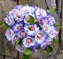 Melhores flores para bouquet de noiva3 Melhores Flores para Bouquet de Noiva
