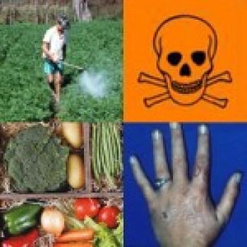 agrotoxicos Curso de Aplicação de Agrotóxico Gratuito