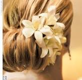 flores para cabelo onde encontrar8 Flores para Cabelo Onde Comprar