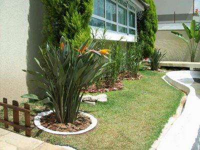 jardim de quintal pequeno 4 Jardins Pequenos, Fotos