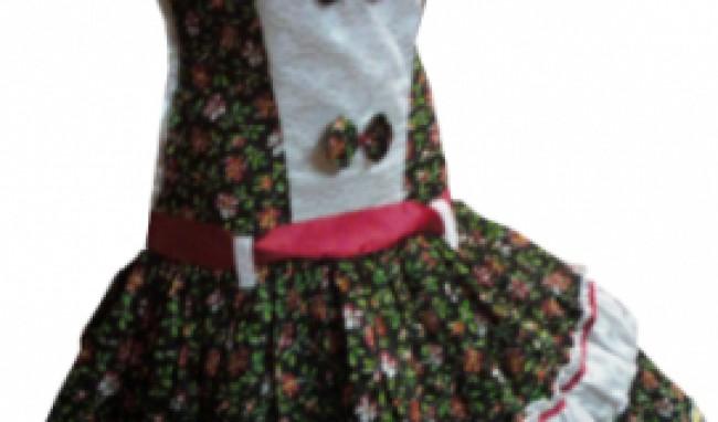 vestido caipira festa junina modelos 2011 6 Vestido Caipira Festa Junina Modelos 2012