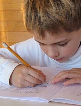 Aulas de Reforço Escolar Gratuitas2 Aulas de Reforço Escolar Gratuitas