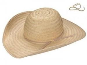 Como Decorar Chapéu de Palha 300x225 Como Decorar Chapéu de Palha
