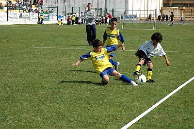 Escolinhas de Futebol para Crianças em São Paulo – Endereços2 Escolinhas de Futebol para Crianças em São Paulo   Endereços