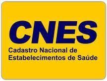 cnes CNES DATASUS Profissionais   Cadastro, Consulta e Manual
