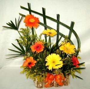 g arranjo de gerberas junco caxepo 300x296 Curso de Florista Online