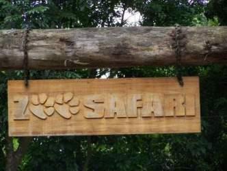 simba safari sp localização horários preços Simba Safari SP Localização, Horários, Preços